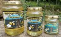 le miel des ruchers de Pierrefitte