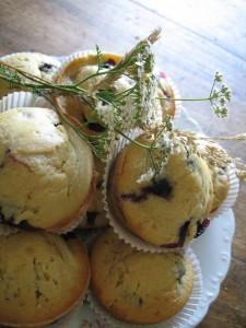 Recettes muffins myrtilles